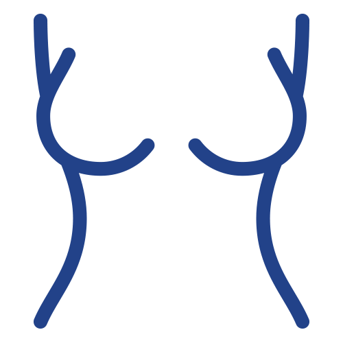 women's torso and breast icon